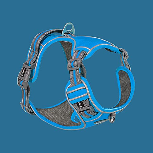 LUBINGT Pet Accessories Dog Harness no Pull Reflective Breathable Adjustable Pet Harness for Large Small Summer Dog Harness Run Train Protective Vest (Color : Blue, Size : S)