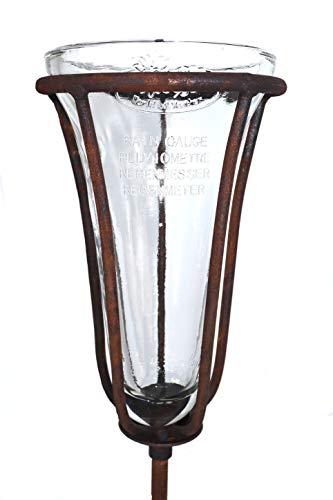 terracotta24 Regenmesser auf Stab aus Metall in Rost, stabil und robust, für den Garten, Niederschlagsmesser Regenmengenmesser