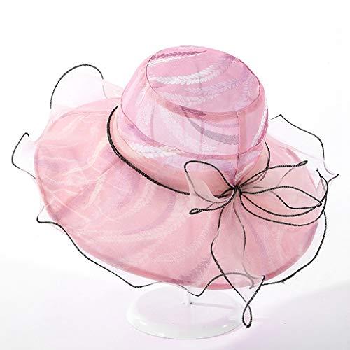 XZzry Summer Mesh Yarn Wave Edge Big Eaves Sun Hat Female Fashion Wild Chicktail Lady Lady Sun Hat (Color : 02)