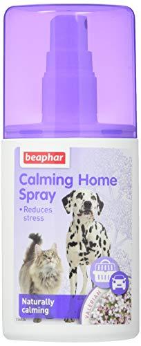 Beaphar Spray Relajante para Perros y Gatos, 125 ml