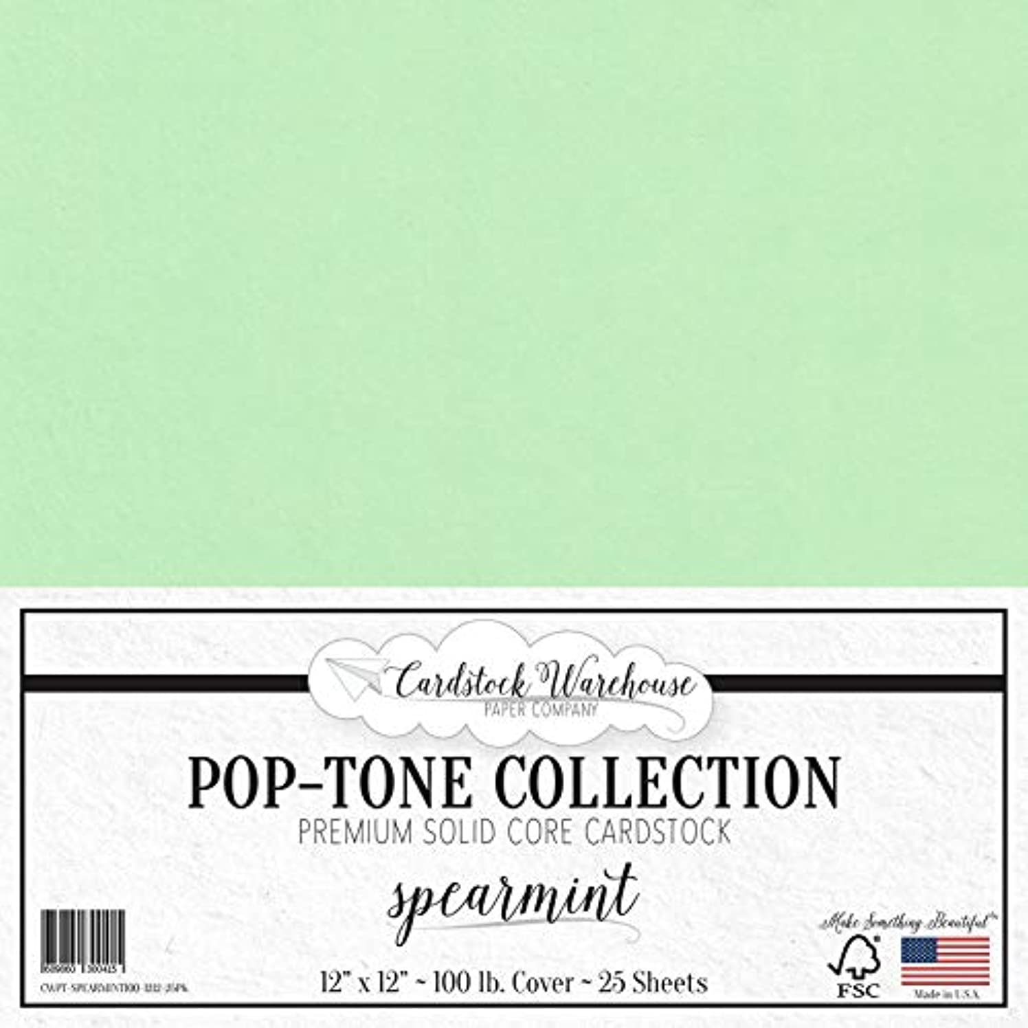 Spearmint Green Cardstock Paper - 12 x 12 inch 100 lb. Heavyweight Cover - 25 Sheets from Cardstock Warehouse