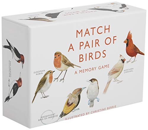 Match a Pair of Birds: A Memory Game (Paperback)