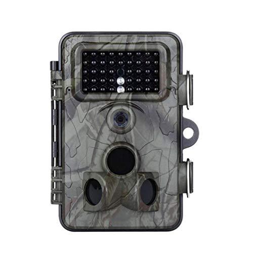 GLJJQMY Cámara 1080P0.4s Velocidad De Disparo Cámara De Seguimiento De La Vida Silvestre 12MP Acción De Visión Nocturna Activada Trampa for Animales Cámara Cam 2.4 Pulgadas Pantalla IP66 Impermeable A