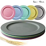 Greenandlife 10inch/5pcs Dishwasher & Microwave Safe Wheat Straw Plates - Lightweight & Unbreakable,Non-toxin, BPA free and Healthy for Kids Children Toddler & Adult