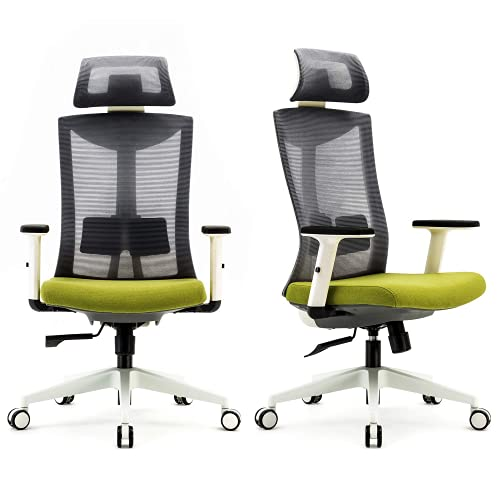 SIHOO Ergonomic Office Chair with Adjustable Lumbar Support and Armrests,Breathable Mesh Back and Padded Seat Desk Chair, Computer Chair for Work(Gray)