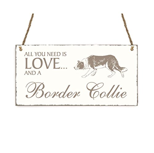 SCHILD Dekoschild « All you need is LOVE and a BORDER COLLIE » Hund Shabby Vintage Holzschild Türschild