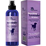 Natural Pet Spray – Aromatherapy Lavender Essential Oil & Primrose Fur Deodorizer - For Dogs & Puppies – Cat Grooming Spray - Cleaner & Odor Control Spray - Cruelty Free – Tear Free Formula 8 Oz