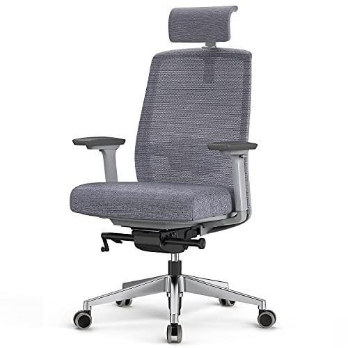 Duwinson Silla de oficina en casa de malla ergonómica, reposabrazos de ajuste en 4 direcciones, silla de escritorio ejecutiva con ajuste reclinable, reposacabezas ajustable, soporte lumbar acolchado