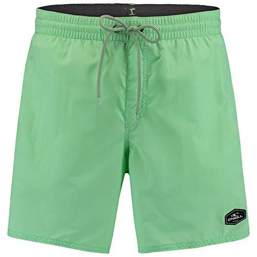 O'NEILL Pantalones Cortos para Hombre PM Vert, Hombre, Bañador, 0A3240, Neo Menta, L