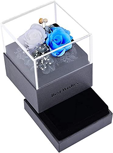 Rosa Real Preservada Eterna Hecha a Mano, Caja de Joyería Ramos, San Valentin Novia Regalos para Bodas de Aniversario Pareja para Mujer Cumpleaños,Azul Claro + Blanco