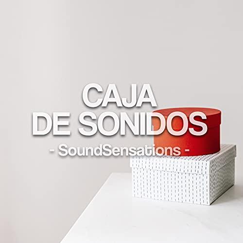 Caja de Sonidos
