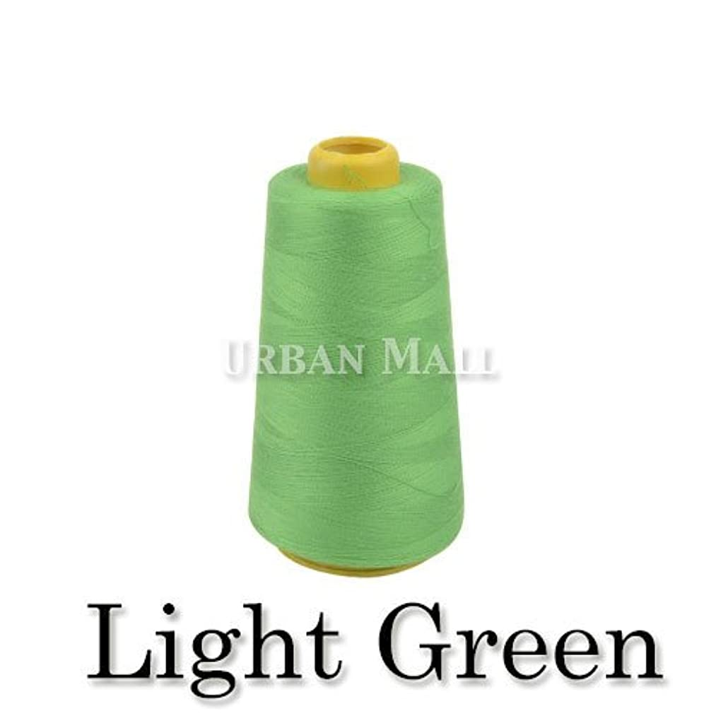 6000 Yards Light Green Sewing Thread All Purpose 100% Spun Polyester Spools Overlock Cone (Upholstery, Canvas, Drapery, Beading, Quilting)