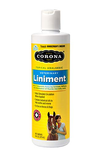Horseman's Dream 0743129101165 Corona Topical Analgesic Veterinary Liniment Horse Reduce Soreness Stiffness Pt