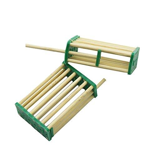 Adhere To Fly 20 Pezzi Alveare api Re Cage Prigionieri Allevamento Ape Wang prigionieri Gabbia di bambù Apicoltura Strumenti