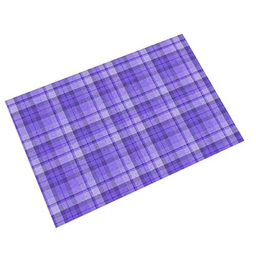 FFLSDR Paillasson Blueberry Purple Plaid Tapis de Bienvenue Tapis de Sol en PVC d