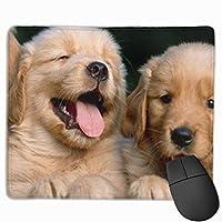 ゴールデンレトリバー犬子犬ペット絵画 マウスパッド ゲーミングマウスパッド ラップトップマット pcマウスパッド リストレスト ラバーマット 滑り止め 耐久性 高級感 25*30