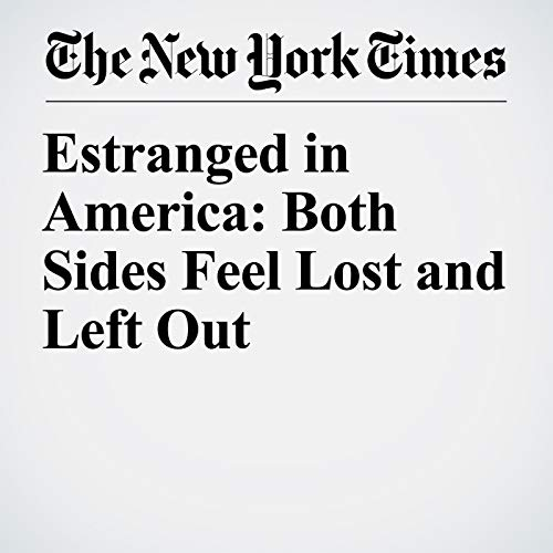 Estranged in America: Both Sides Feel Lost and Left Out copertina