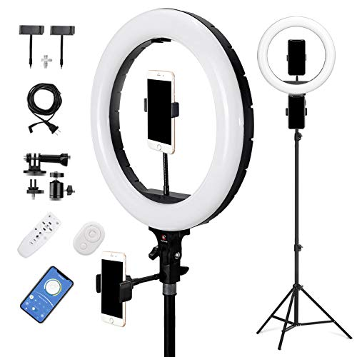 E EyeGrab 14'' Studio Selfie Ring Light with 94'' Tripod Stand, 10'' Ringlight for Free Gift, Adjustable 3000K-7000K Color Temperature Lighting for YTB Portrait Photo Video, Camera Phone Laptop, Black