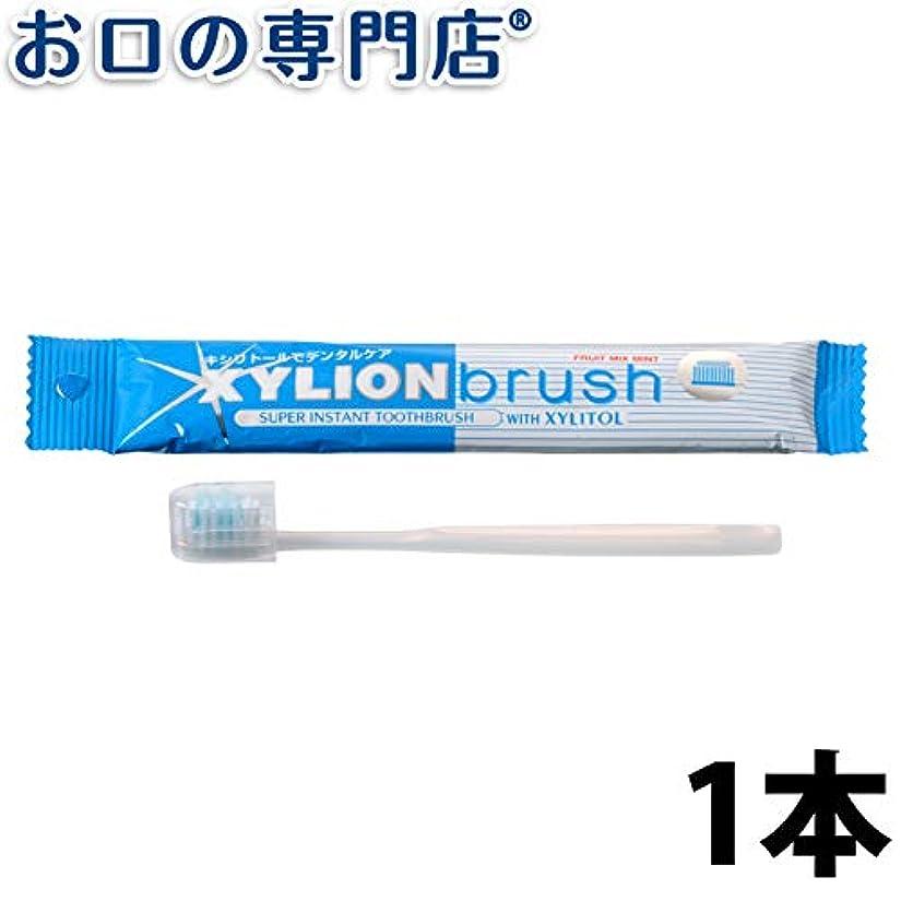 発明するジーンズ格差キシリオンブラシ XYLION brush 1本