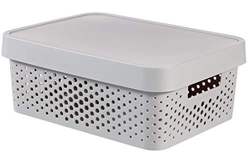 CURVER 04753-099-00 Boîte à Rangement Infinity Points avec Couvercle 11L en Gris Clair, Plastique, 36,3x27x22,2 cm