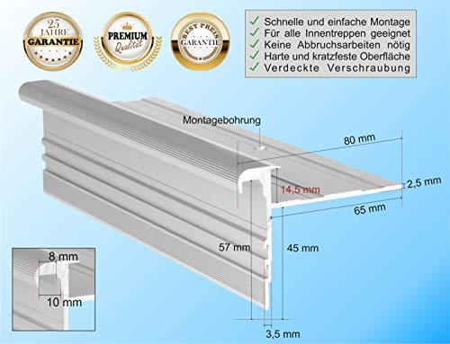 RenoProfil 150 cm Treppenprofil STANDARD 14,5 für Parkett und Holz - Treppenkantenprofil für Treppenverkleidung und Treppenrenovierung - Farbe: Silber-Natur