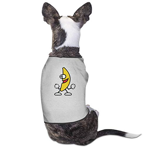 Preferred Store Dancing Fruit Pet Service Pet Clothing Funny Dog Cat Costume T-Shirt