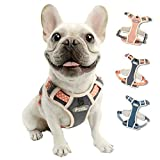 TUFF HOUND Dog Harness No-Pull Pet Harness Adjustable Reflective Breathable Oxford Soft Vest Easy Control Front Clip Harness for Small Medium Large Dogs Outdoor Walking