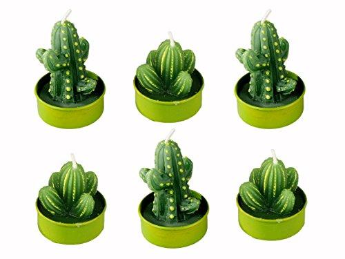 6er Set Teelichter ~ Kaktus ~ Teelicht Kaktee witzige Dekoidee Kerze Dekoration