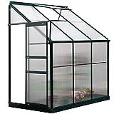 Outsunny invernadero de jardín de policarbonato con techo ajustable resistente a los rayos uv para huerto jardinería 192x125x221 cm transparente y verde
