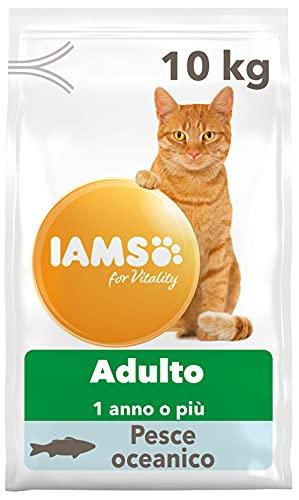 croccantini per gatti quali scegliere migliore guida acquisto