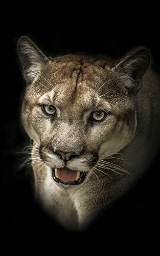 Notebook: Puma Cat in the Wild 5