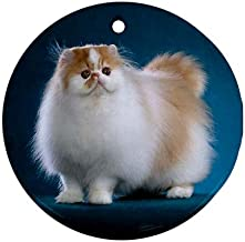 Best persian cat christmas ornaments Reviews