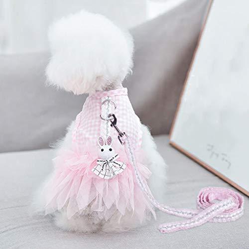 FAPROL Arnés para Perros Vestido para Mascotas Linda Falda De Velo 1,2 M Correa para Perros, para Perros Pequeños Moda Cómodo Y Transpirable En Verano Pink XXL