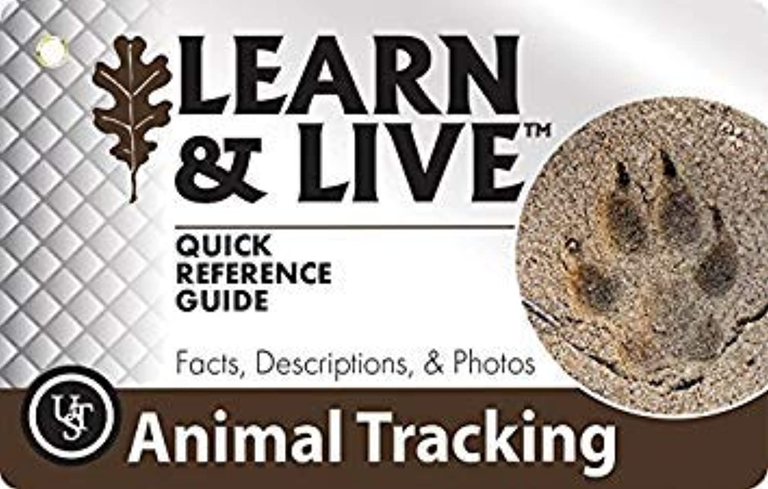 UST Learn Live Educational Card Set, Animal Tracking