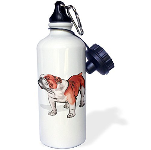 ANGELA G Leuke en Knuffelige Canine Engels Bulldog Sport Waterfles, 21 oz, Wit RVS Waterfles