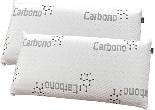 DHestia - Almohada Viscoelástica Carbono Activo Anti Malos Olores y Anti Humedades Doble Funda ViscoActive. (Pack 2 uds 70 cm)