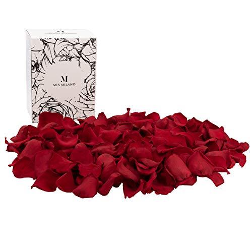 Mia Milano Rosenblätter Rot I Rosenblüten aus echten Rosen I Romantische Deko