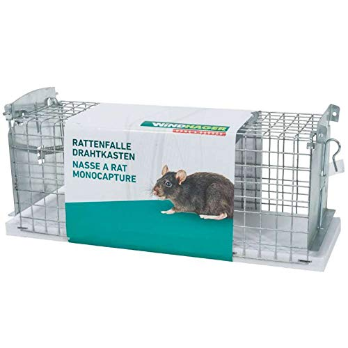 Nasse pour rats et souris