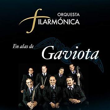 La Orquesta Filarmonica En Alas De Gaviota