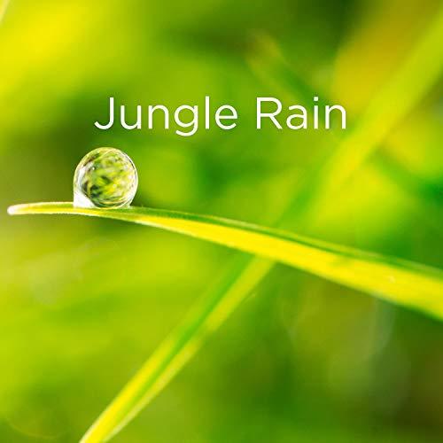 Relaxing Jungle Rain for Sleeping