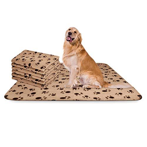 Nobleza - 6 x Hundedecke Weiche Fleecedecke Waschbare Deck für Haustier Hunde Katzen Welpen Weiche Warme Matte, Beige, 120 * 100 cm