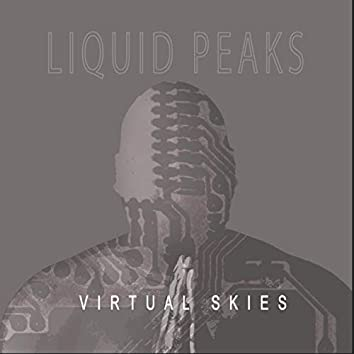 Virtual Skies