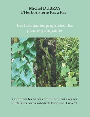 les propriétés fascinantes des plantes grimpantes: comment les lianes communiquent avec les différents corps subtiles de l'homme