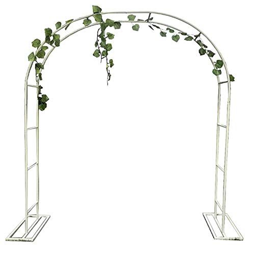 COFFEE CAT Arch ForClimbing Plants,Garden Arch,Garden Arbor,White, Metal, With Support Frame,Multiple Sizes,Wedding Arch Party Ceremony Decoration