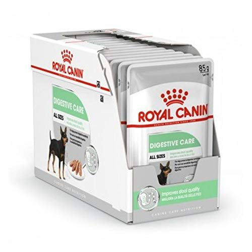 ROYAL CANIN Digestive Care Paté para Perros Comida Húmeda, Caja Completa 12 x Sobres 85 gr