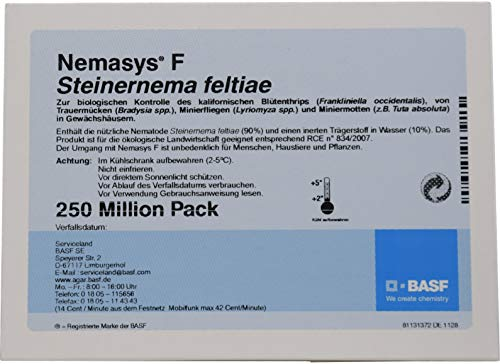 Nemasys® F BASF SF Nematoden 250 Mio. (500m²) gegen Wiesenschnaken (Tipula) und Trauermücken - Profipackung