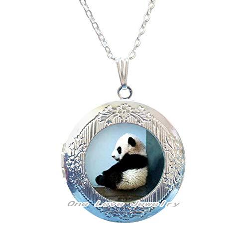 Collar con colgante de panda con medallón de panda, joyería de panda, colgante de panda, collar con medallón de animales, collar de oso con medallón de oso panda y oso de panda, colgante de oso