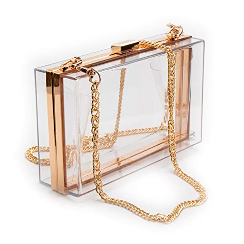 L-COOL Cute Transparent Acrylic Shoulder Bag Clear Crossbody Evening Clutch Bag With Gold Snake Chain(2 Chains) For Women (White Clear)