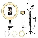 Aro de Luz, 30cm Anillo de luz LED Selfie con Trípode de 168cm y Soporte para Teléfono, 3 Modos de Luz y 9 Brillos Regulable, para Youtube TIK Tok Instagram Fotografía Maquillaje Vlog Vídeo Live