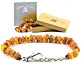 AmberPetCare Bernsteinkette für Hunde und Katzen/Bernsteinhalsband für Hund und Katze/Bernstein Gegen Zecken/aus Roh Baltischer Bernstein (50-55)